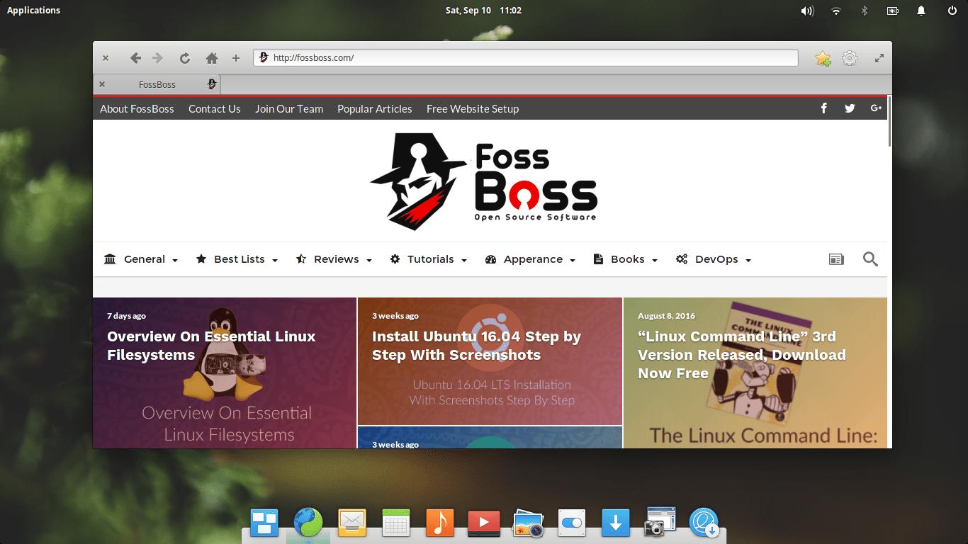 Elementary OS 0.4 Loki Web Browser