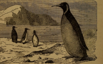 10 Years of Using Linux: How It Was Before, And How it Became 14