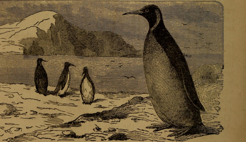 10 Years of Using Linux: How It Was Before, And How it Became 11