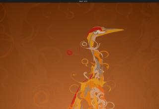 ubuntu 20.04 19 May 9, 2020